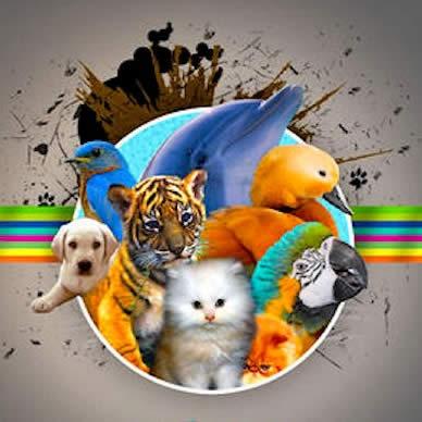 Animal Sounds (6151)