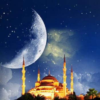 Islamic (486)