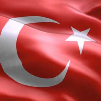 Turkish (551)