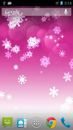 Snowflake Pro
