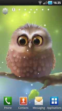 Little Owl Lite