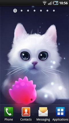Yang The Cat Lite