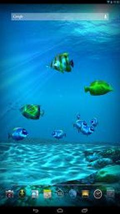 Ocean HD New 2013