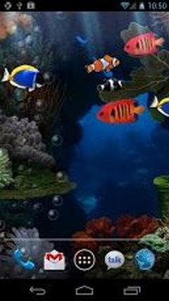 Aquarium new