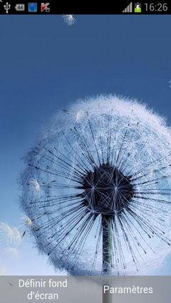 Galaxy S3 Dandelion
