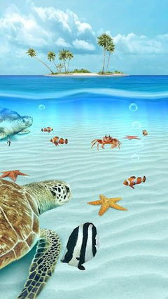Ocean Aquarium 3D
