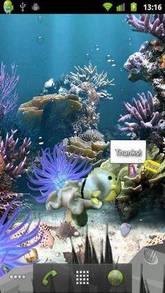 Coral Reef Lite Aqua Live