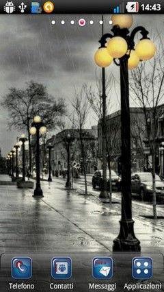 Winter Regen