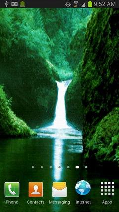 Rainforest Lake