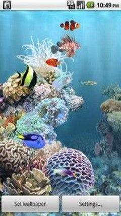 Fishpet Aquarium
