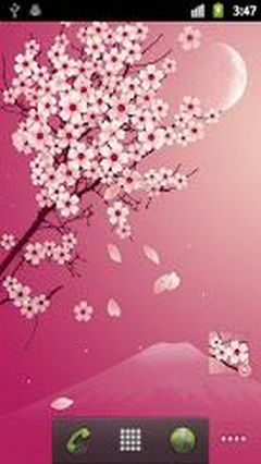 Sakura Pro