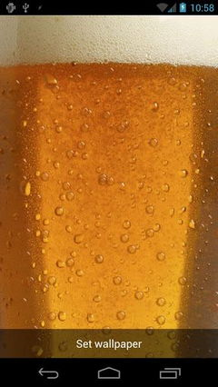 Beer Lite