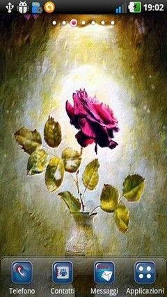 Power Rose Lwp