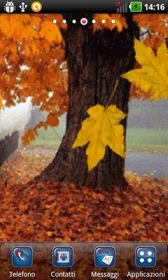 Autumn Leaves Lwp