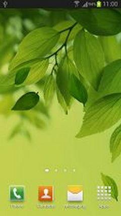 orginal leaf