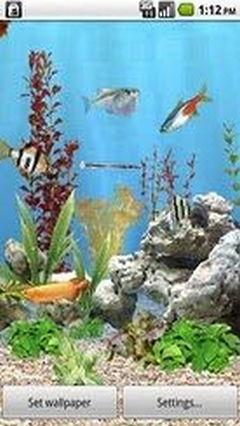 aniPet Freshwater