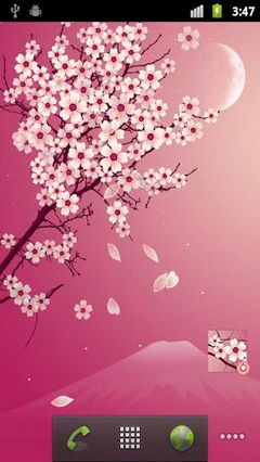 Sakura Pro 1.4.4