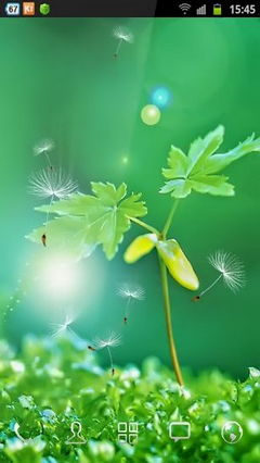 Green Miracle