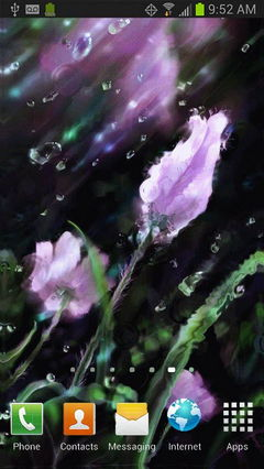 rain on screen tulips