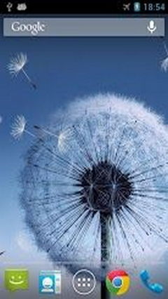 Download the Galaxy S3S4 Dandelion featuring flying seeds