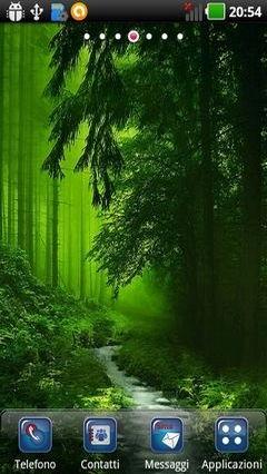 Spooky Woods Lwp