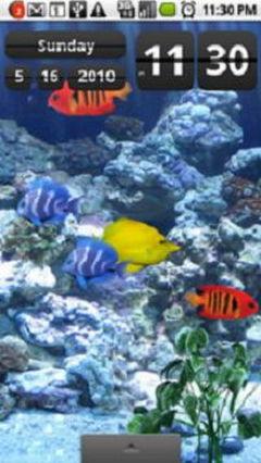Aquarium-Free-1