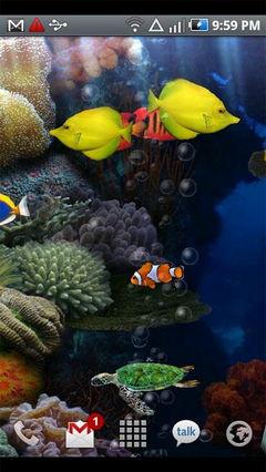 A Anipet aquarium