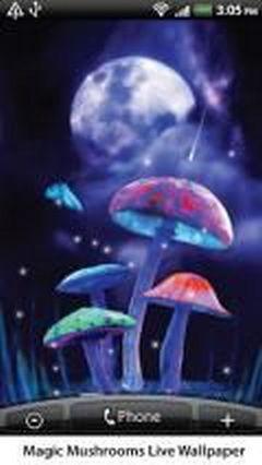 Magic Mushroom 1.05