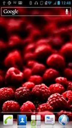 Berry HD