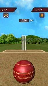 Flick Cricket 3D T20 World Cup
