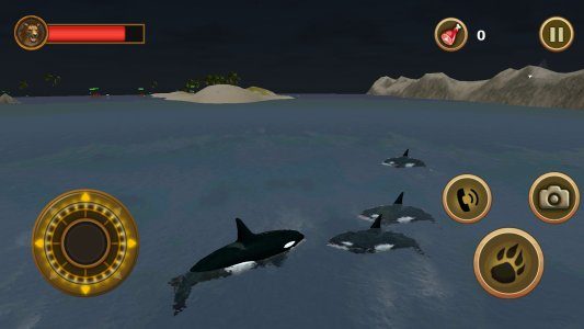 Orca Survival Simulator