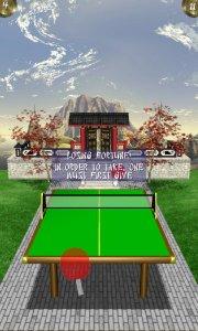Zen Table Tennis Lite