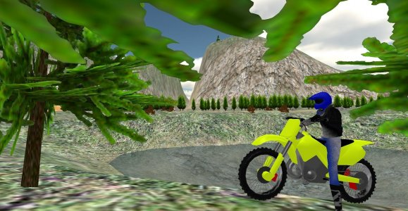Bike Racing: Offroad Motocross