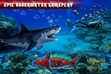 Blue Angry Shark 2016