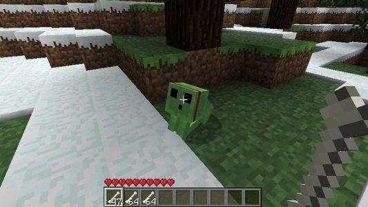 Pet Ideas - Minecraft