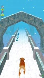 Temple Dog Run
