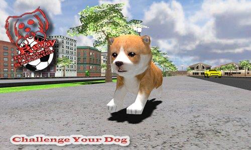 My Cute Pet Dog Puppy Jack Sim