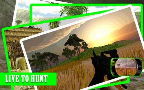 Safari Hunting Challenge
