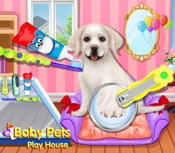 Dress Up - Pet Salon™