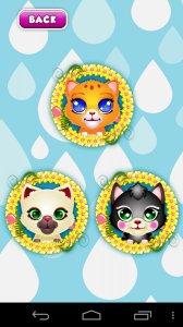 Cat Pet Wash
