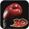 Boxing 3D
