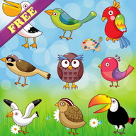 Coloring Book: Birds ! FREE