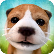 Dog Simulator - Create chaos with this friendly dog