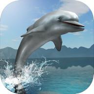 Dolphin Survival Simulator