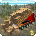 Drive Real Speed Truck Simulator