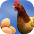 Egg Collect Game