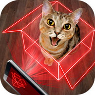 Hologram for cats. Simulator