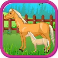 Horse Baby Birth