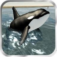 Orca Whale Simulator 3D