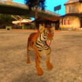 Tiger Simulator